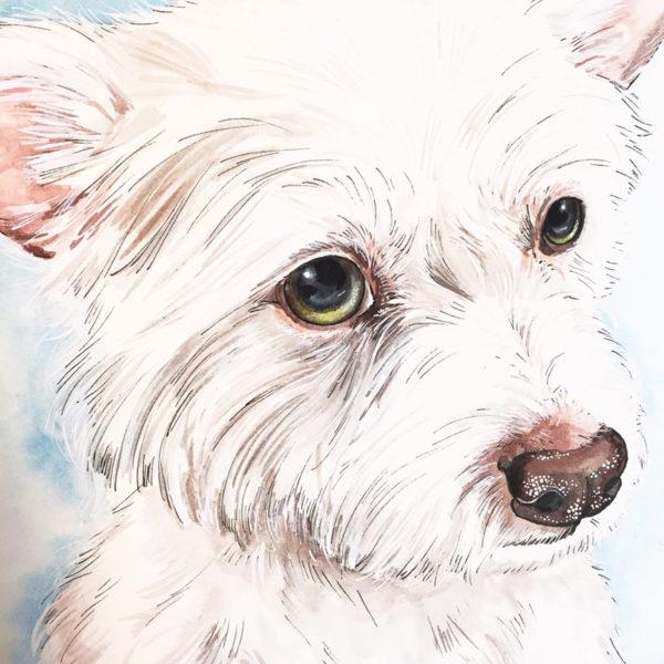 one of a kind pet portraits